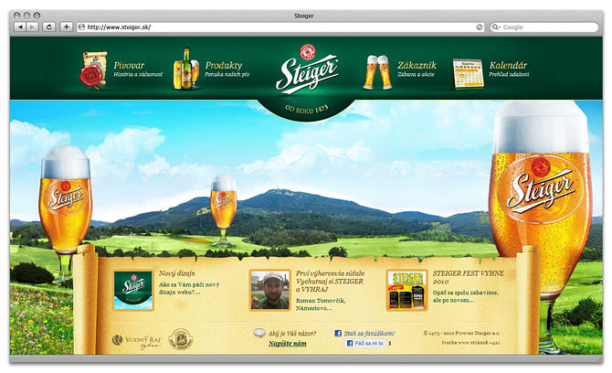 web design home page steiger